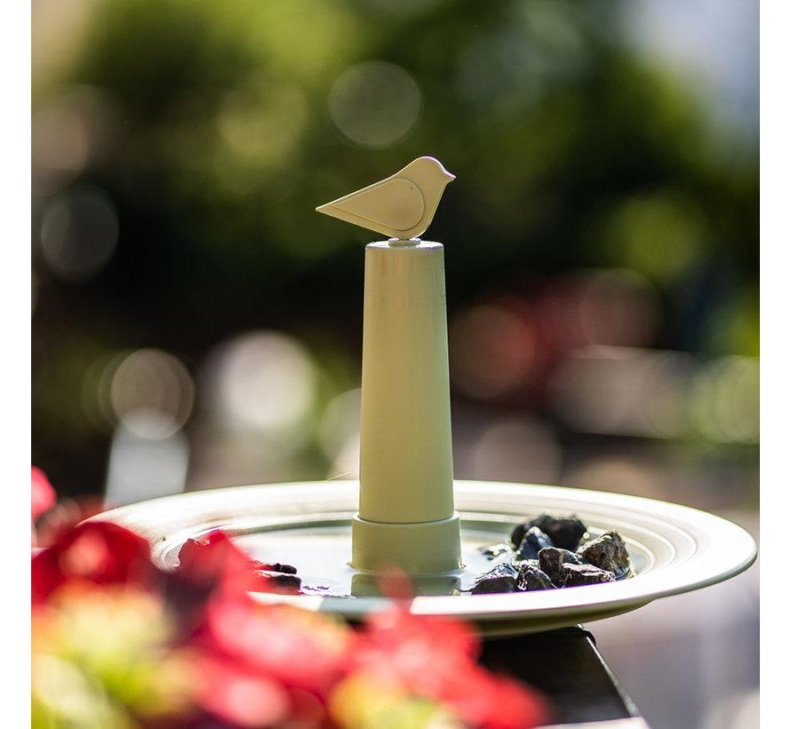 Vogelbad Finch Olijfgoen