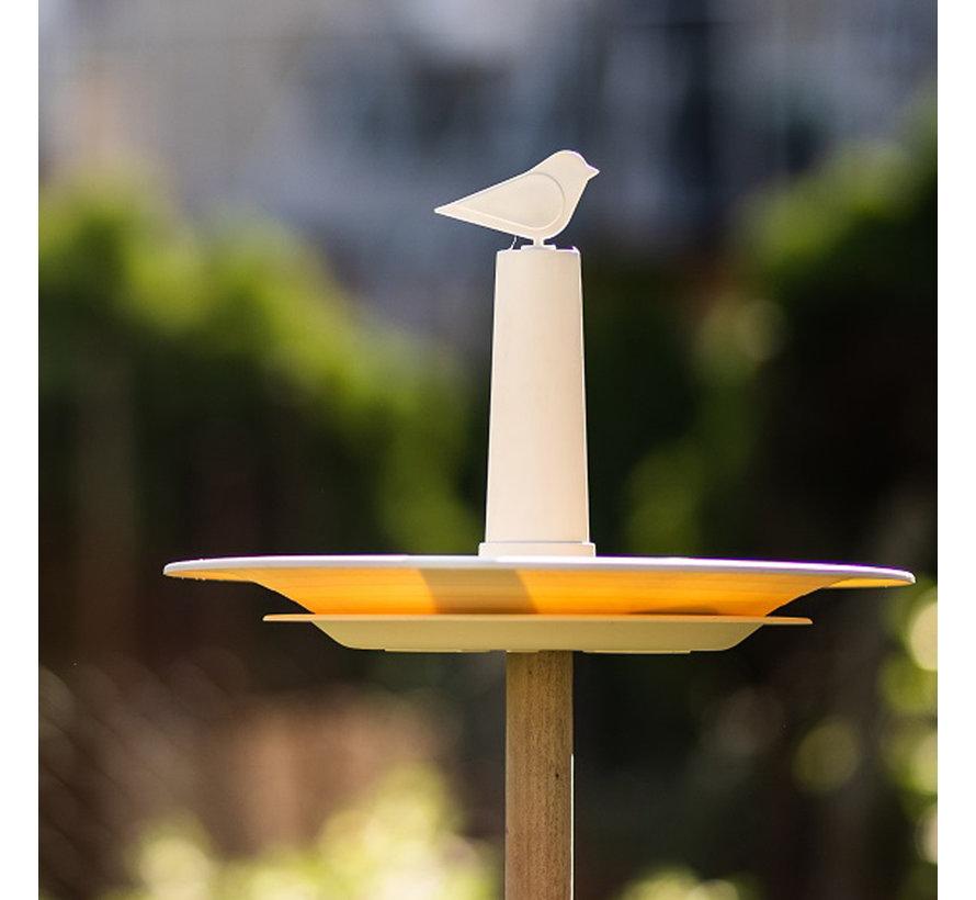Vogelbad Finch Ivoor