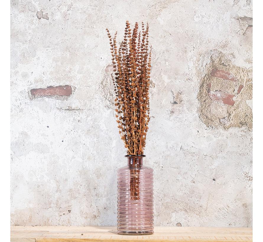 Gedroogd Palma Grass Naturel | 100 gr. 50-65 cm