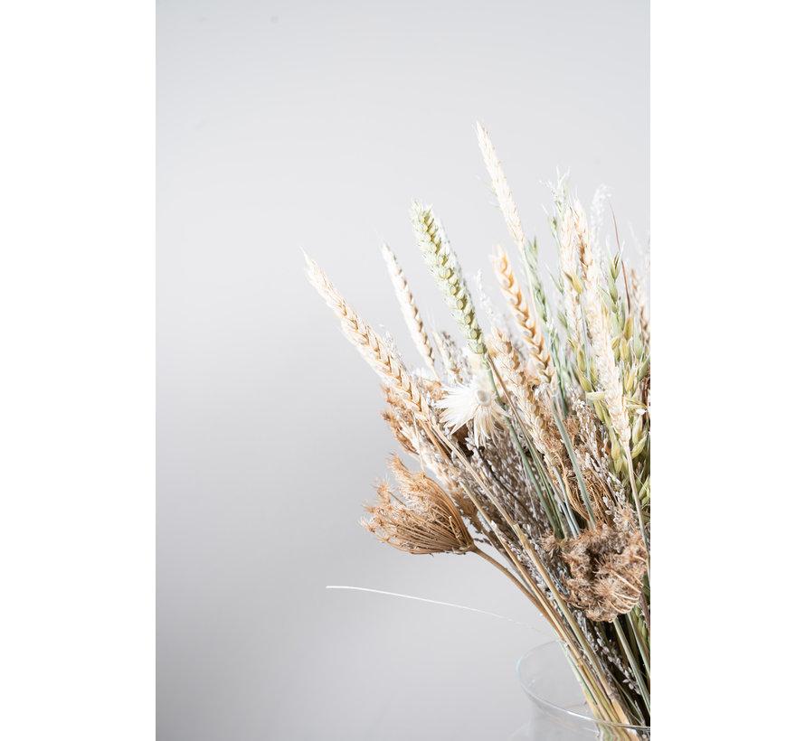 Droogbloemen Boeket Wit met of zonder Vaas | Celeste