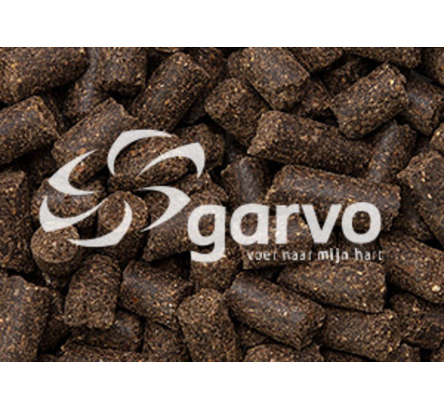 Garvo Fyto Dog 15 KG