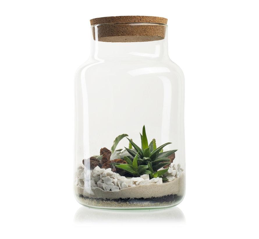 Just add Plants Terrarium H30 D19 cm Transparant
