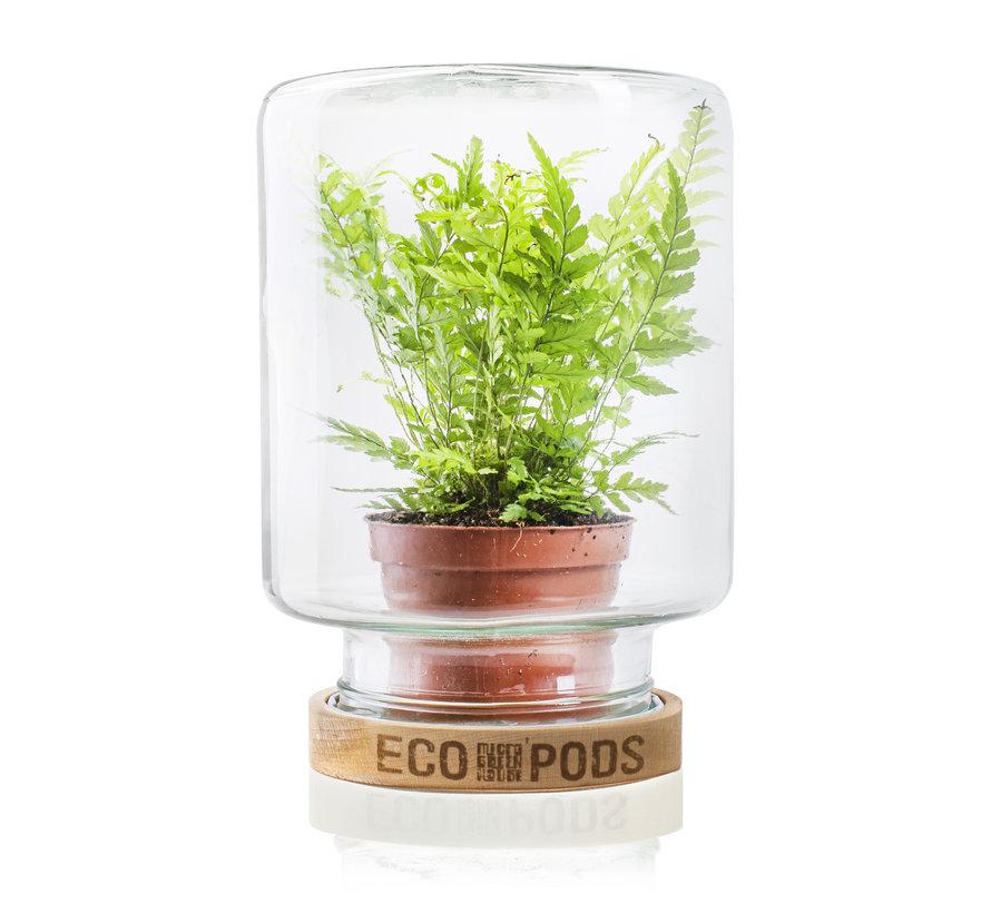 Micro Greenhouse 'Mitch' H20 D15,5 cm Transparant