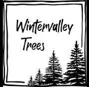 Wintervalley Trees