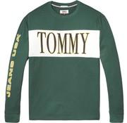 Tommy Hilfiger longsleeve t-shirt groen (DM0DM05197 - 396)
