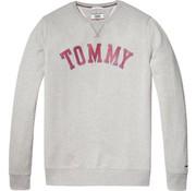 Tommy Hilfiger sweater grijs (DM0DM05160 - 038)