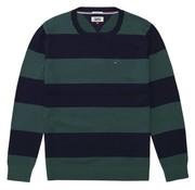 Tommy Hilfiger trui regular fit (DM0DM05063 - 396)