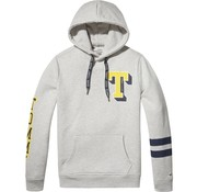 Tommy Hilfiger hooded sweater regular fit grijs (DM0DM05148 - 038)