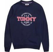 Tommy Hilfiger Sweater zwart (DM0DM05910-002)