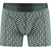 Garage boxershort Nevada Green (0802)