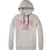 Tommy Hilfiger hooded sweater regular fit grijs (DM0DM05289 - 038)