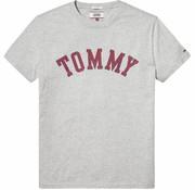 Tommy Hilfiger t-shirt regular fit grijs (DM0DM05110 - 038)