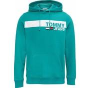 Tommy Hilfiger Hoody Groen (DM0DM06047 - 399)