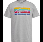 Tommy Hilfiger T-shirt gekleurd Logo Grijs (DM0DM06079 - 038)