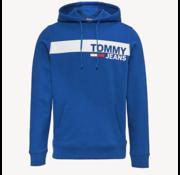 Tommy Hilfiger Hooded Sweater Regular Fit Logo Blauw (DM0DM06047 - 434)