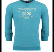 New Zealand Auckland NZA New Zealand Auckland sweater Hawdon groen (18MN300 - 479)