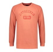 Dstrezzed Sweater Koraal (211252 - 428)