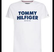 Tommy Hilfiger T-shirt Slim Fit Tee Wit (MW0MW09821 - 100)