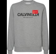 Calvin Klein Sweater Logo Grijs (K10K104517 - P9V)