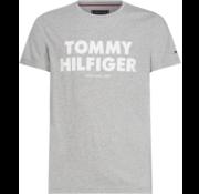 Tommy Hilfiger T-shirt Logo Grijs (MW0MW09821 - 501)