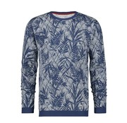 A Fish named Fred Pullover Navy Blauw Met Print (92.02.505)