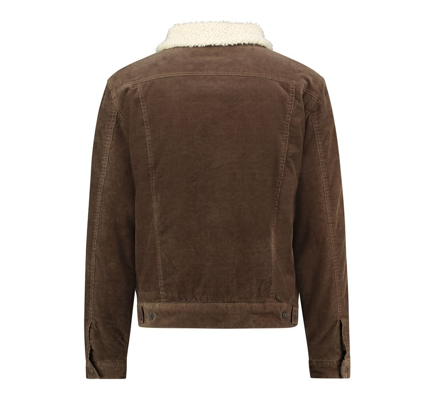 Bomberjack Teddy Bruin (MU12-1011-Dark Brown)