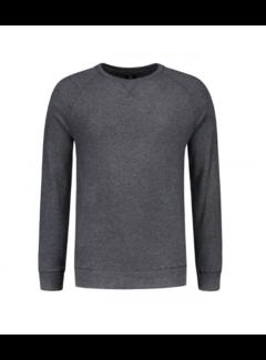 Dstrezzed Crewneck Super Soft Sweater Grey Melange (211261 - 830)