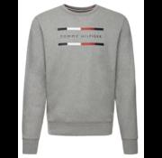 Tommy Hilfiger Sweater Ronde Hals Antraciet (MW0MW11603 - P9V)