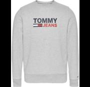 Tommy Hilfiger Sweater Ronde Hals Logo Grijs Gemêleerd (DM0DM07930 - PPP)