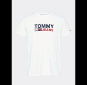 Tommy Hilfiger T-shirt Ronde Hals Met Logo Wit (DM0DM07843 - YBR)