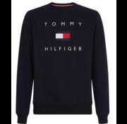 Tommy Hilfiger Sweater Navy (MW0MW14204 - DW5)