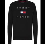 Tommy Hilfiger Sweater Zwart (MW0MW14204 - BDS)