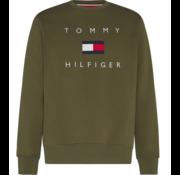 Tommy Hilfiger Sweater Groen (MW0MW14204 - MSH)