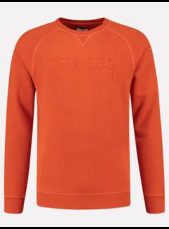 Dstrezzed Sweater Met Logo Oranje (211336 - 439)