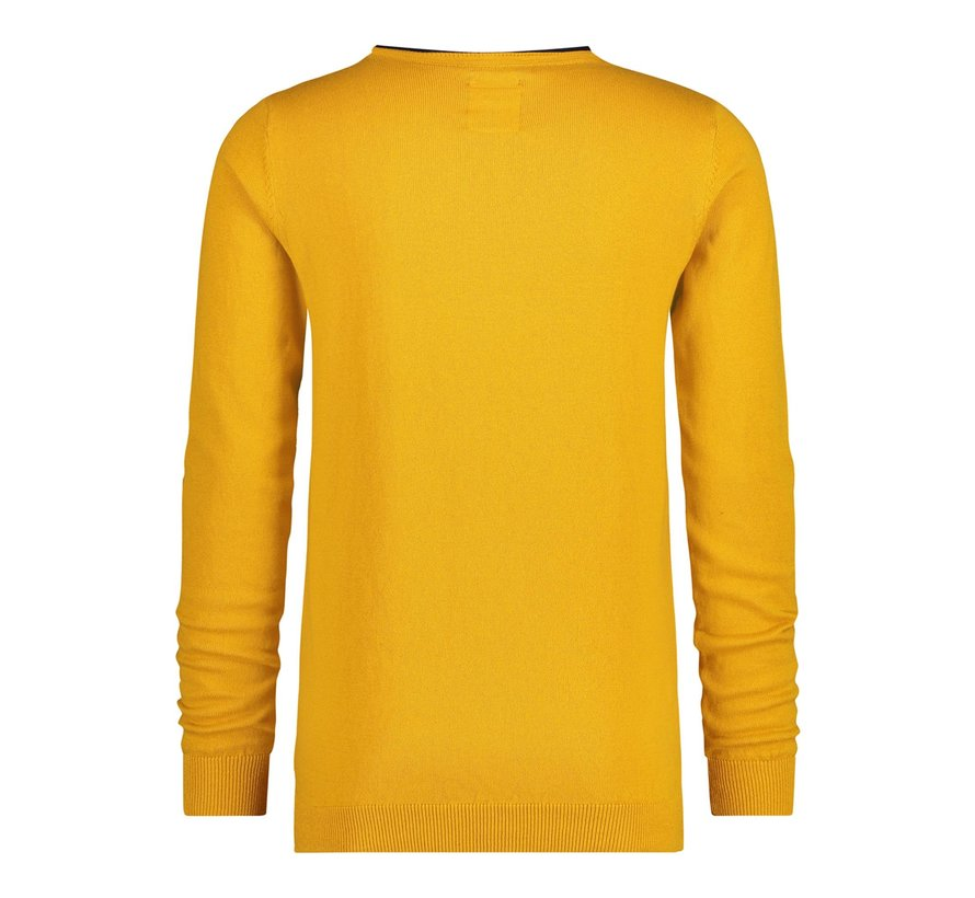 Pullover Geel (21.01.520)