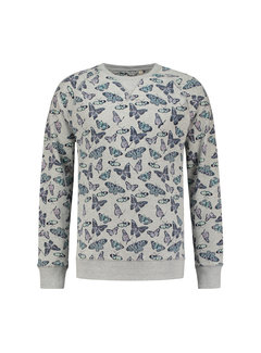Dstrezzed Sweater Vlinders Lichtgrijs Melange (211117 - 893)