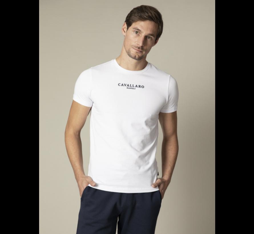 T-shirt Logo Regular Fit White (117211000 - 100000)