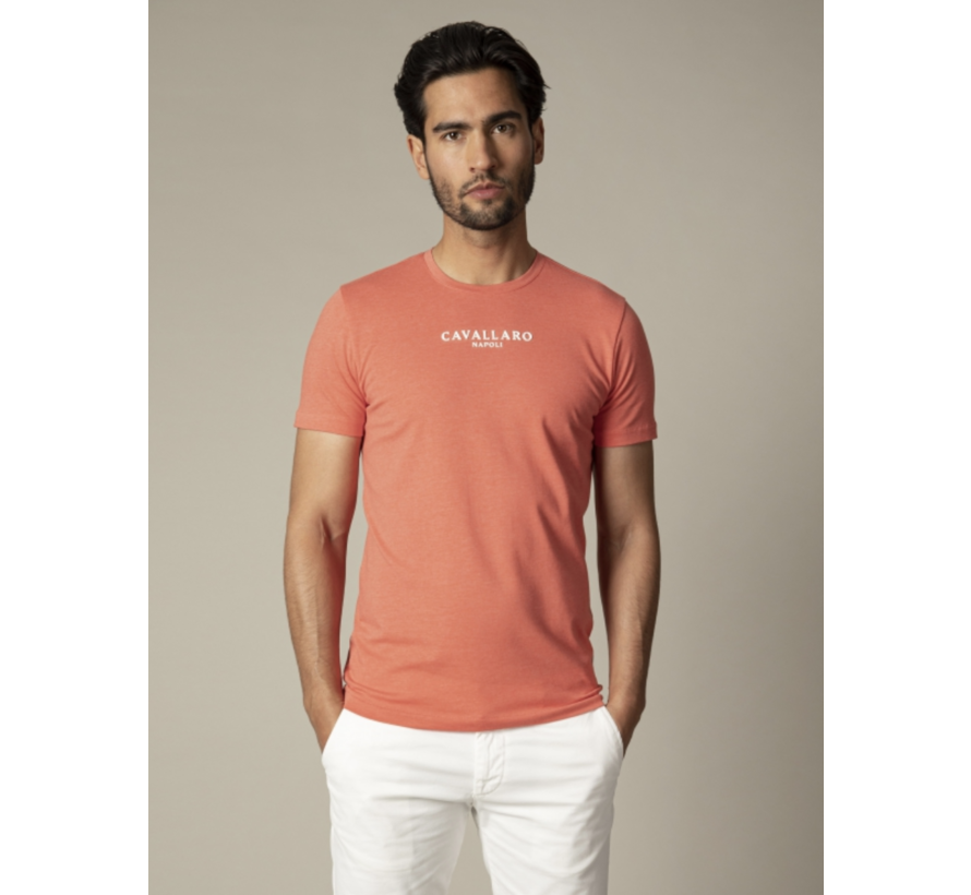 T-shirt Logo Regular Fit Coral (117211000 - 4550000)