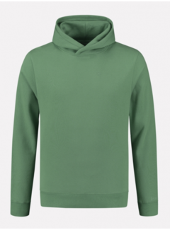 Dstrezzed Hooded Sweater Ivy Groen (211378 - 532)