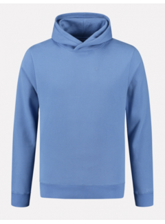 Dstrezzed Hooded Sweater Sky Blauw (211378 - 628)