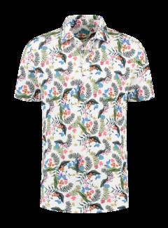 District Indigo Polo Jungle Multicolor (7.11.401.408 - 307)