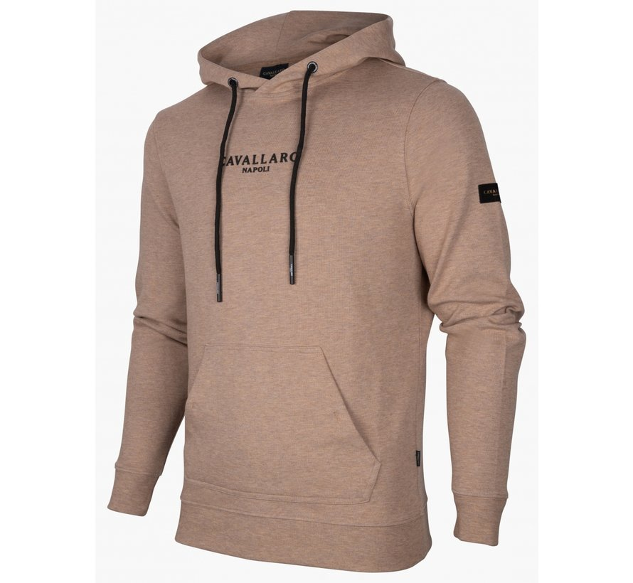Hooded Sweater Athletic Beige (120216001 - 826000)N