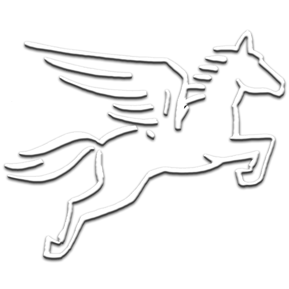 Pegasus Pro GmbH