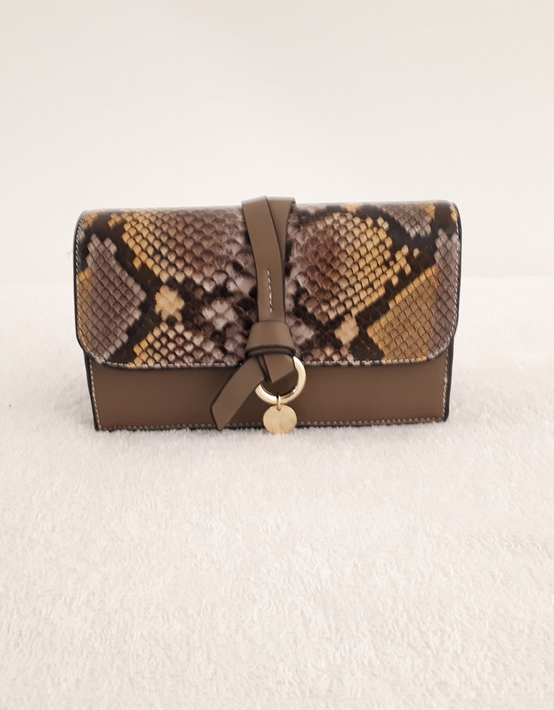 About accessories Bag Brown with Print