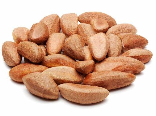 Hofman's Brazil Nuts Raw