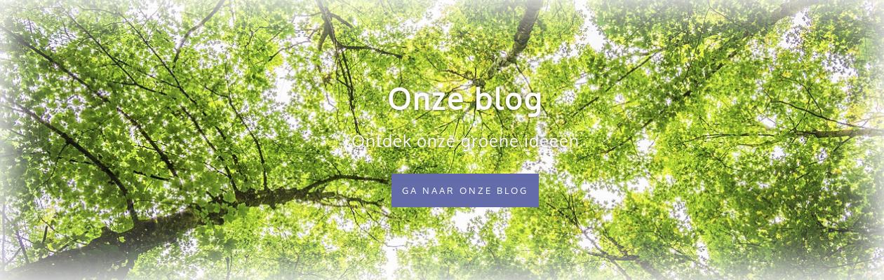 Ga naar de blog