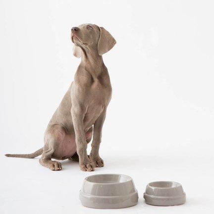 Luxe hondenspullen