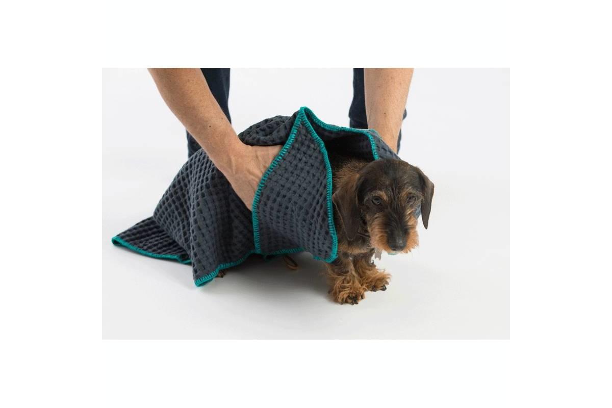 2.8 Design für Hunde Sally Hundehandtücher Blau
