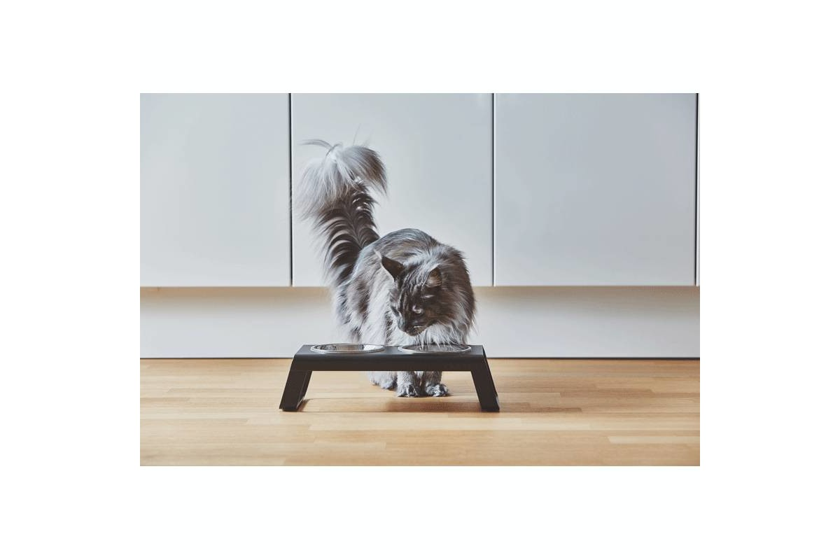 MiaCara Desco Cat Food Tray Walnut
