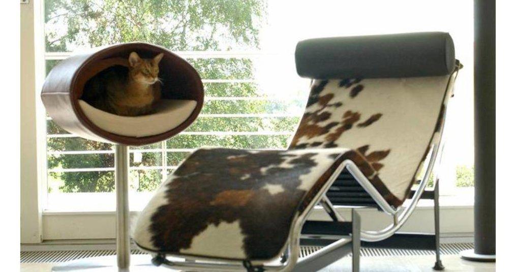 De mooiste producten van Pet Interiors